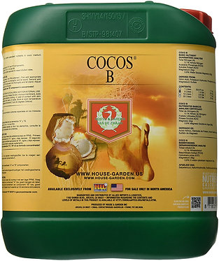 Cocos B