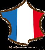 logo-france.png