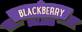 blackberry-sylabub.png