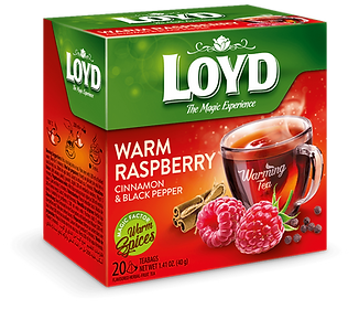 VIS-LOYD-20T-2018-WARMING-EXP-raspberry-
