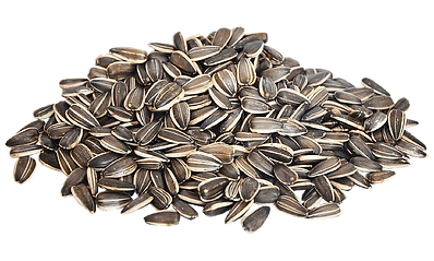 Download-Sunflower-Seeds-PNG-Image-compr