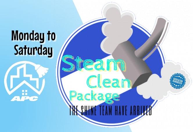 Steam Clean Package