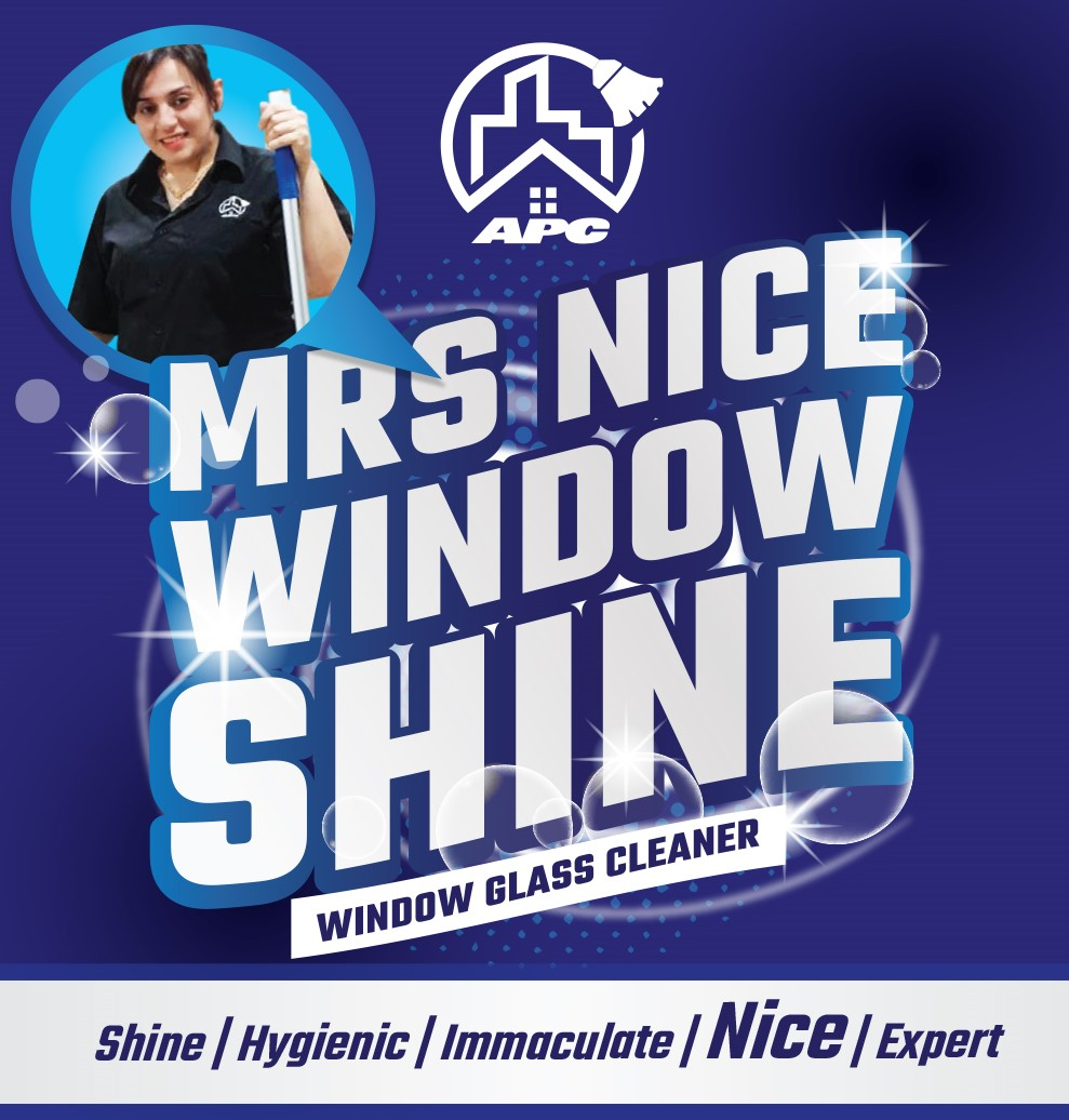 Mrs shine window cleaner