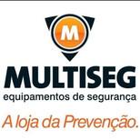 Multiseg
