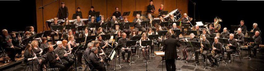 VERNON Philharmonic Orchestra