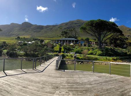 Cape Point Vineyards Wedding Venue