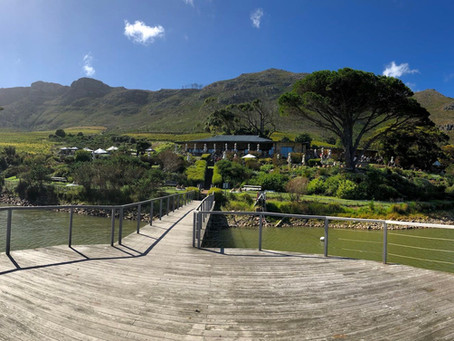 Cape Point Vineyards Wedding Venue