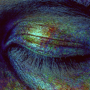 a starry sky beneath her eyebrow (elettra's psychedelic eye)