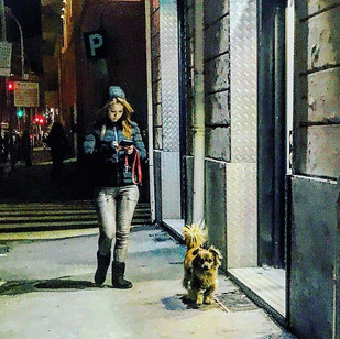 the lady with the dog reloaded (millennial version)_ hoppersaucin' again