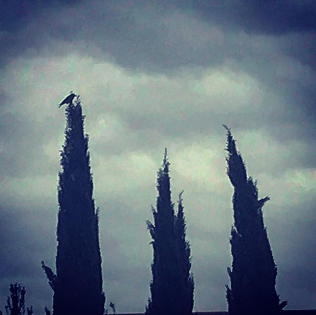 the raven poised on the  cypress summit (preromantic poem)