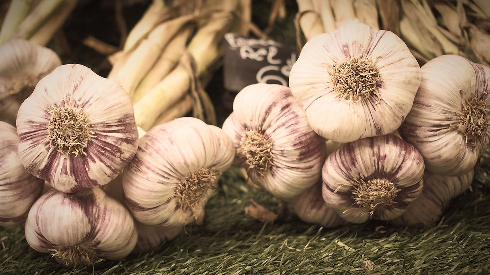 Garlic%20on%20the%20street%20market%20in