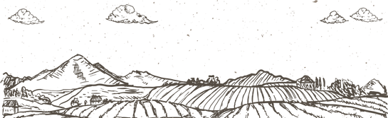 Footer Banner-01.png