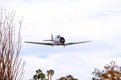 Fly In -2.jpg