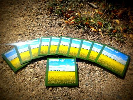 Erde & Sky CD's.JPG