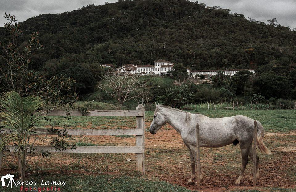 Faz Santa Clara Santa Rita de Jacutinga Marcos Lamas