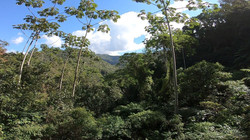 Serra da Mantiqueira