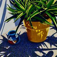 Succulent Shadows I