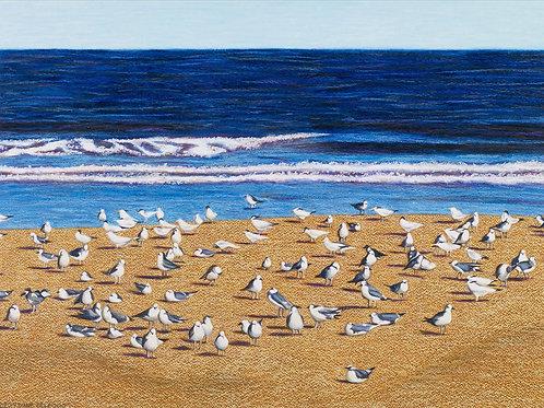 Ormond Beach IV