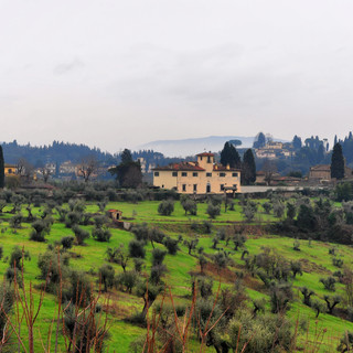 Tuscany - more than an overused Olive Ga