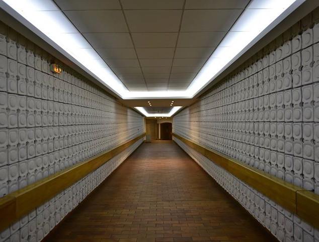 A hallway in Monaco