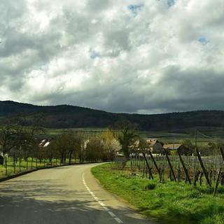 Alsatian wine on the open road