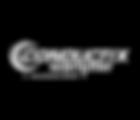 conductix-wampfler.png
