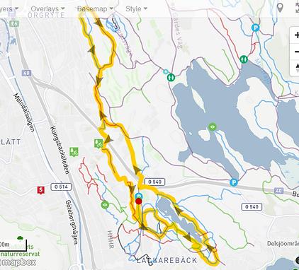 lackarebäck_roller_coaster_map.png