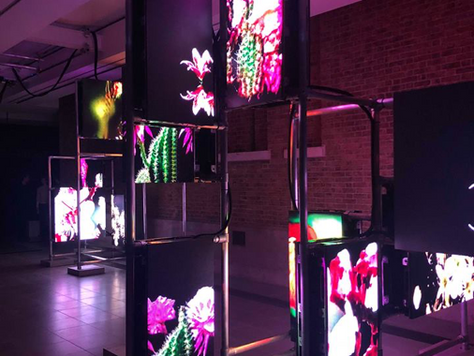 'Hito Steyerl: Power Plants' Review - The Serpentine Gallery