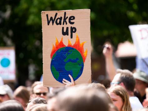 Preaching to the Choir: a Plea for Environmental Art