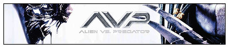 04 - ALIEN VS PREDATOR.jpg