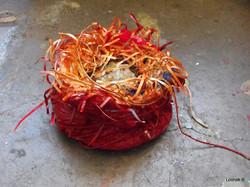 Red Nest