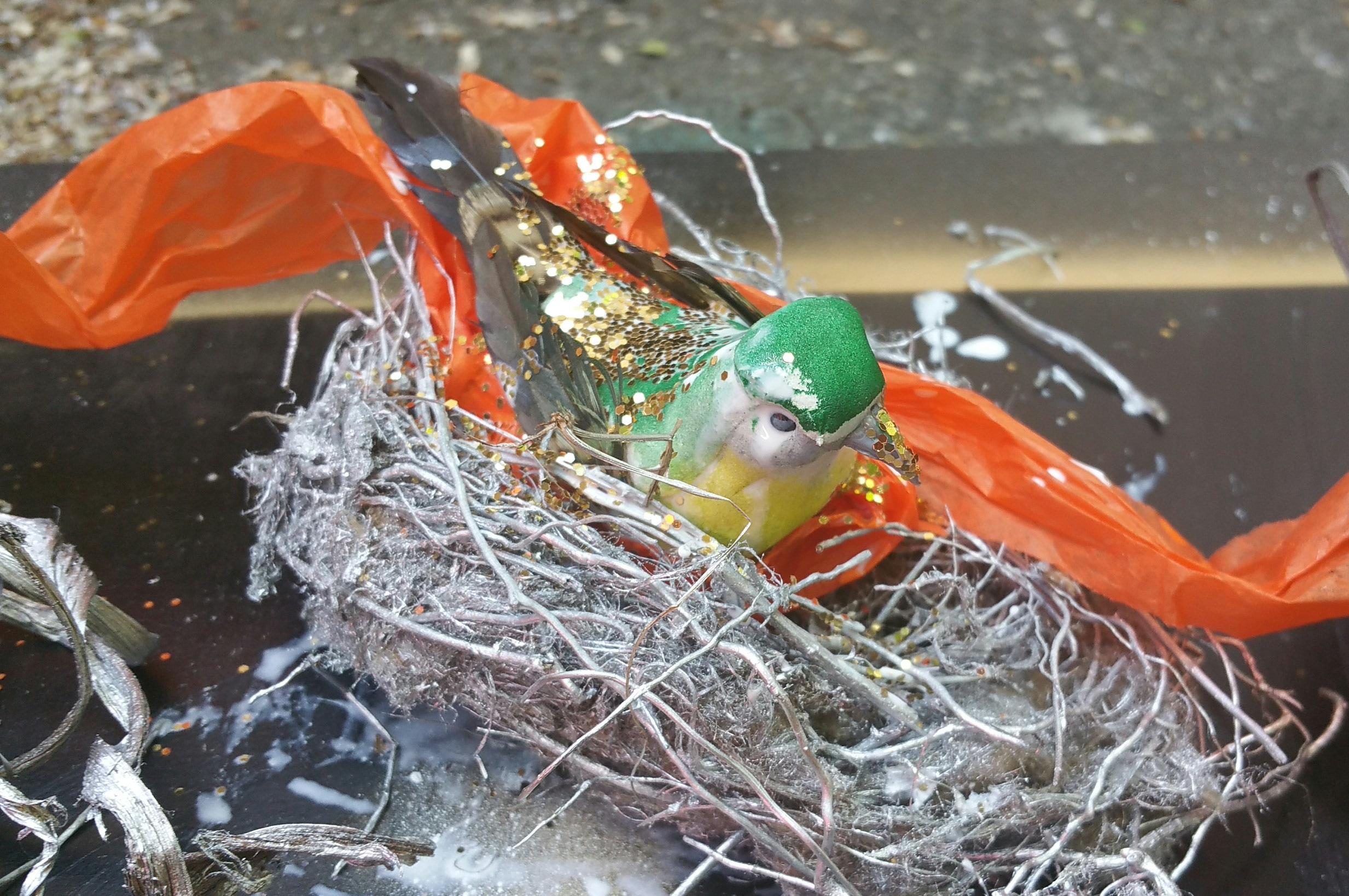 Green Bird n  Nest