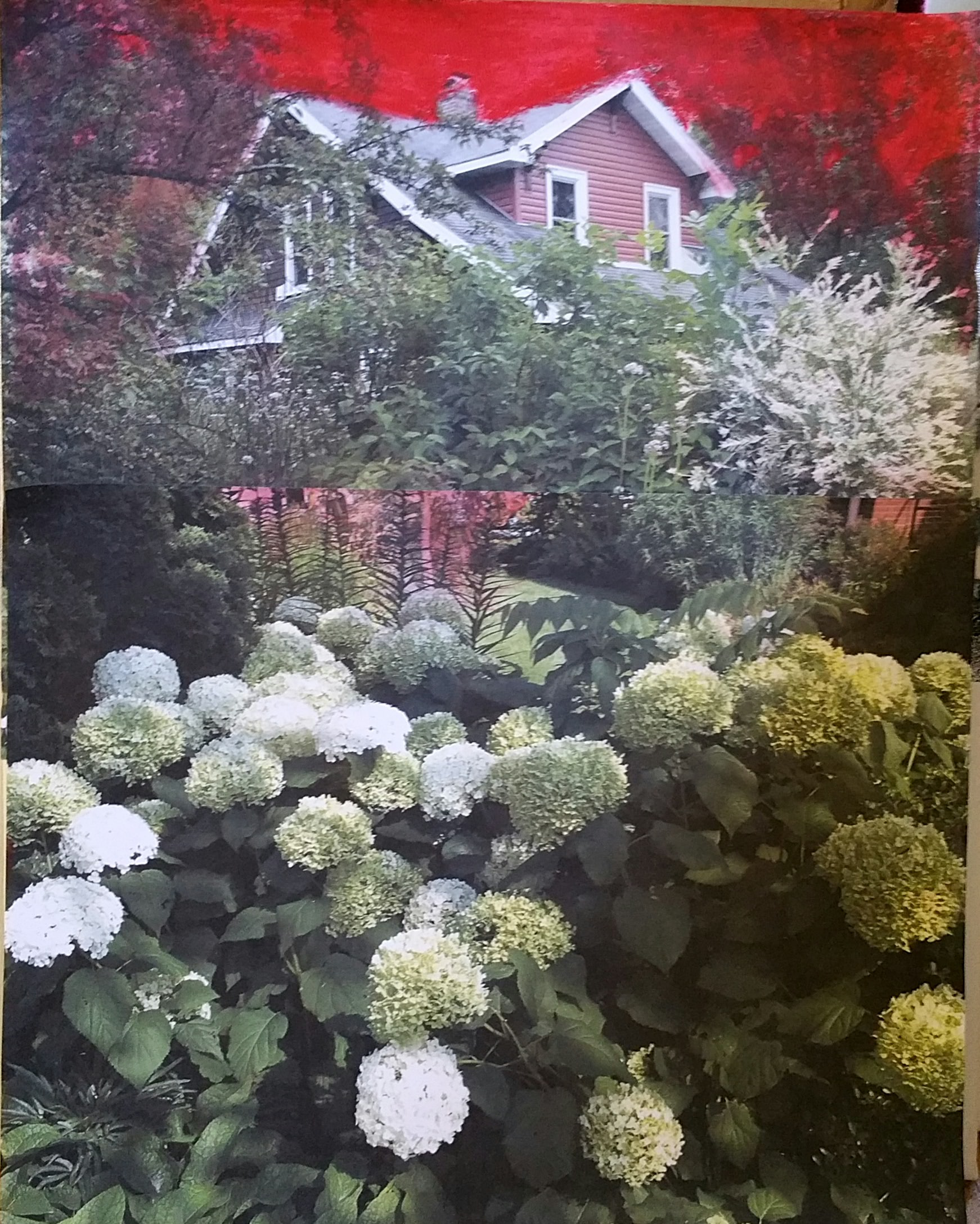 House N Garden