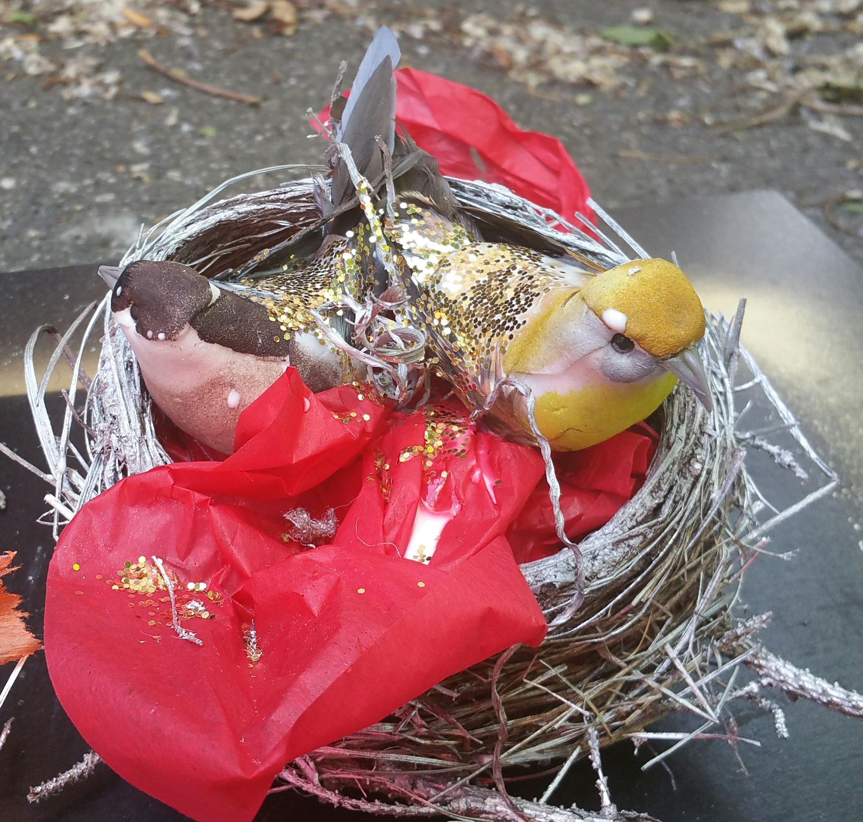 Bird in Red Nest