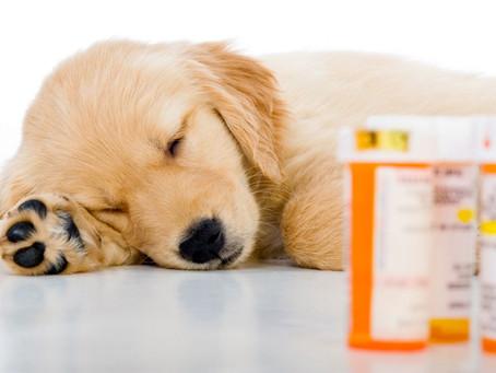 Dangers of Online Pharmacies