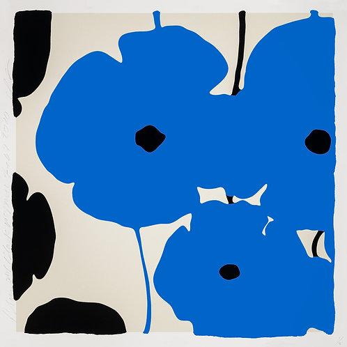 Blue & Black Poppies Feb 3