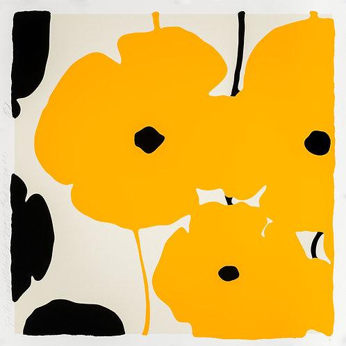 Yellow & Black Poppies Feb 3
