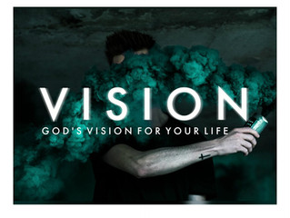 WHAT IS THE PURPOSE OF VISION