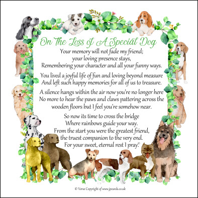On The Loss of a Special Dog