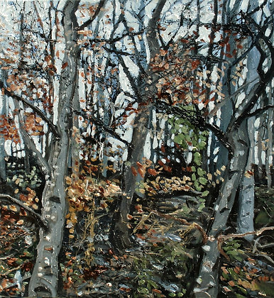 Ash and Alder Autumn 1