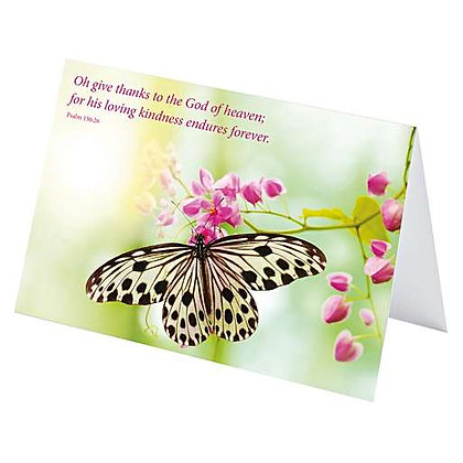 Butterfly Card - Pack of 4
