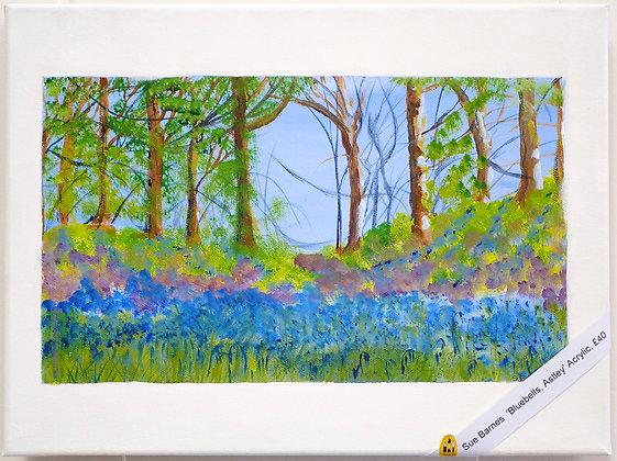 'Bluebells Astley'