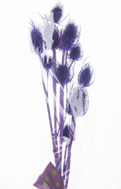 Marshy Thistle Purple Bouquet