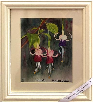 'Fuchsia Prestion Guild'