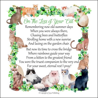 Loss of Your Cat