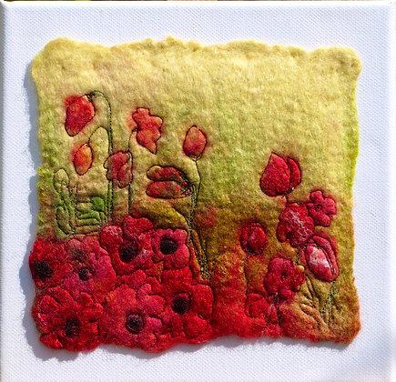 'Poppies 1'