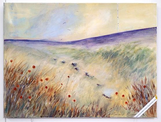 'West Pennine Moor'