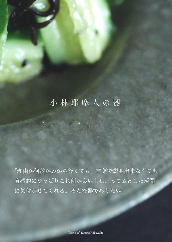 2・作品について小林耶摩人.jpg