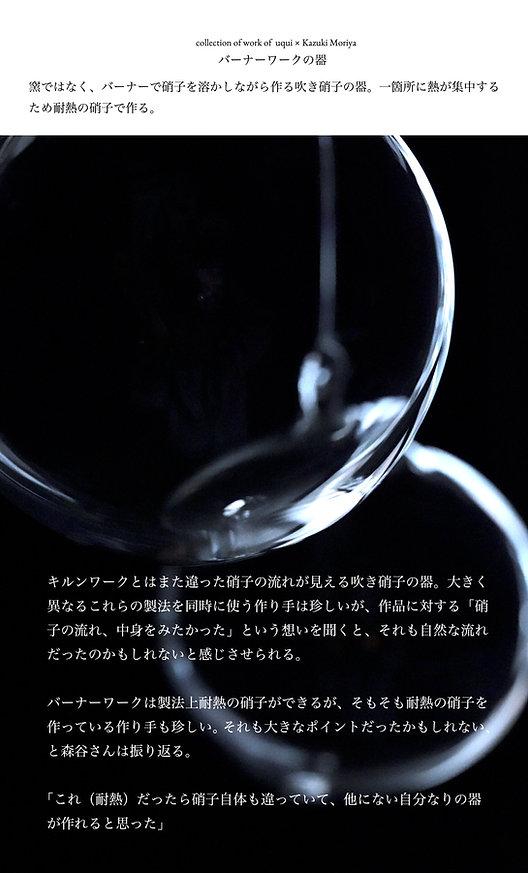 6・バーナーワーク(耐熱クリア硝子)の器.jpg