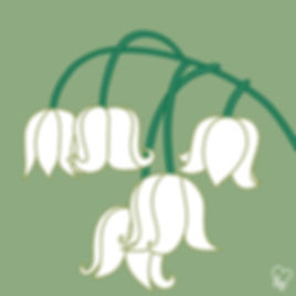 68. Lily of the Valley.jpg